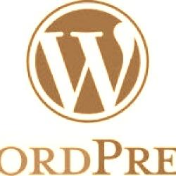 I migliori hosting economici per WordPress