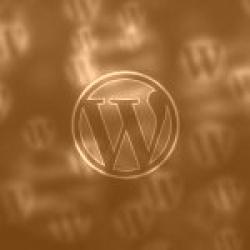 Quali plugin sono utili per velocizzare e rendere più efficente WordPress