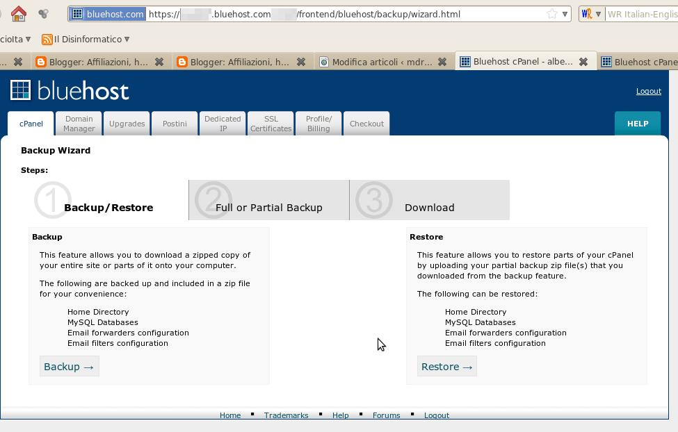 Hosting Bluehost: funzionalità di backup programmato dei tuoi dati (Guide)
