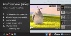 Vulnerabilità non risolta su Video Gallery WordPress Plugin