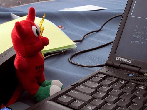 Falla informatica in FreeBSD (News)
