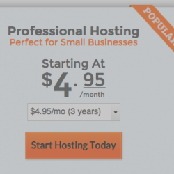 Midphase Professional Hosting