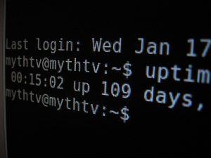 """<span class=""""entry-title-primary"""">Garanzie sugli uptime? Non servono</span> <span class=""""entry-subtitle"""">Quando un hosting pubblicizza un uptime del 99.9% non è detto che tutti i nostri problemi risiedano lì</span>"""