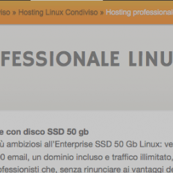 ServerPlan Enterprise SSD + 1 dominio incluso