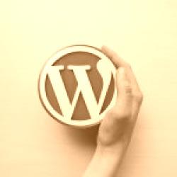 Come mostrare al mondo un theme WordPress realizzato da te
