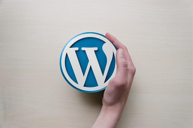 Come mostrare al mondo un theme WordPress realizzato da te (Guide, Guide per la configurazione di WordPress)