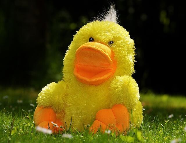 DuckDuckGo: panoramica di base sul motore di ricerca (Guide, Zona Marketing)