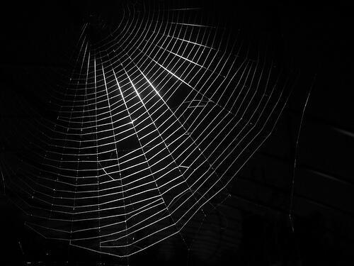 Come entrare nel dark web (Guide, Internet)