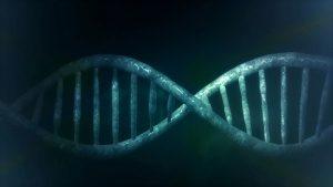 Usare il DNA per memorizzare dati: il nuovo progetto di Microsoft prende forma