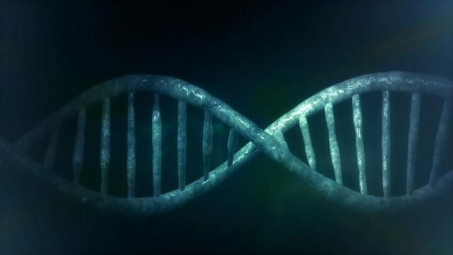 Usare il DNA per memorizzare dati: il nuovo progetto di Microsoft prende forma (News)
