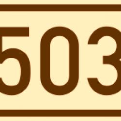 Errore 503, cos'è e come si risolve
