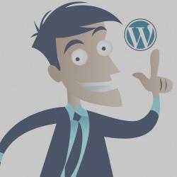 Guida generale all'uso di WordPress