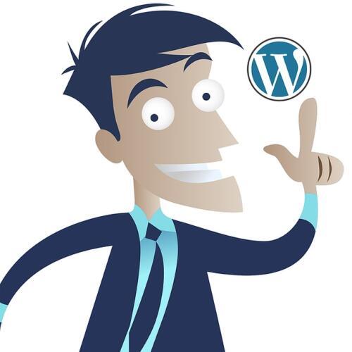 WordPress per principianti: la nostra guida (Guide, Guide per la configurazione di WordPress)
