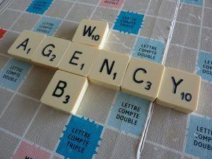 """<span class=""""entry-title-primary"""">Registrazione domini con estensione: .agency</span> <span class=""""entry-subtitle"""">Il TLD per le agenzie di ogni tipo che operano sul web</span>"""