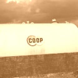 Registrare un dominio .coop