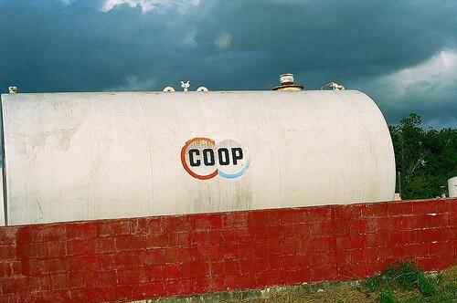 Domini .coop: come e dove registrarne uno (Guide, Mondo Domini)