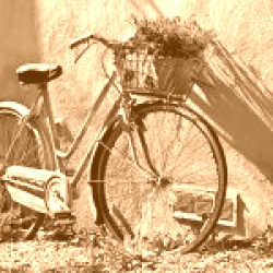 Registrazione domini con estensione: .bike