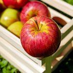 Apple, virus per Mac: ma è vero che non esistono?