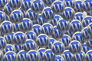 """<span class=""""entry-title-primary"""">Aprire un sito o un blog WordPress con hosting TopHost</span> <span class=""""entry-subtitle"""">Ecco una procedura passo-passo per tutti coloro che non sanno precisamente come fare</span>"""
