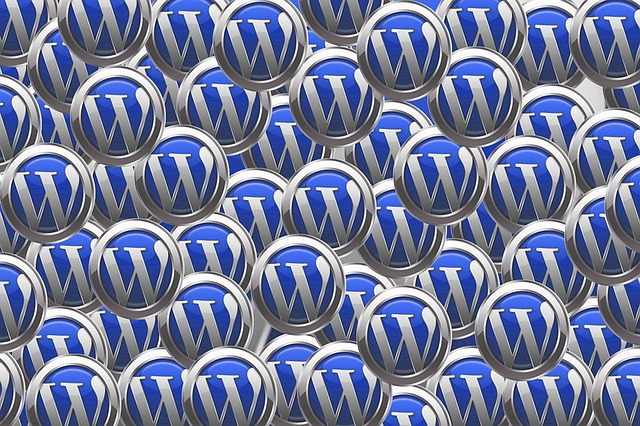 Aprire un sito o un blog WordPress con hosting TopHost (Guide, Suggerimenti per gestire il tuo sito)