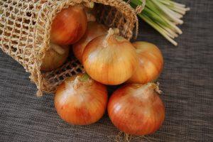 Domini .onion: cosa sono, e come registarne uno