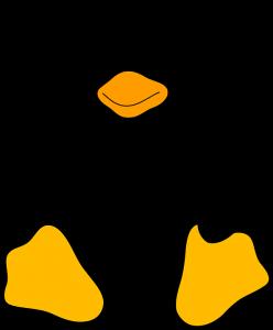 Guida per principianti: i principali comandi del terminale Linux