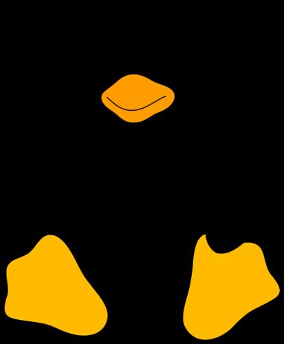 Principali comandi da terminale Linux (Guide, Assistenza Tecnica, Configurazione Hosting)