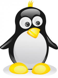 Cosa significa hosting Linux?