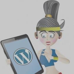 Come ottimizzare il database di WordPress: uso degli indici