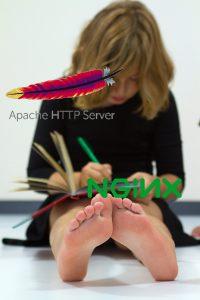 Apache vs. Nginx: quale server scegliere?