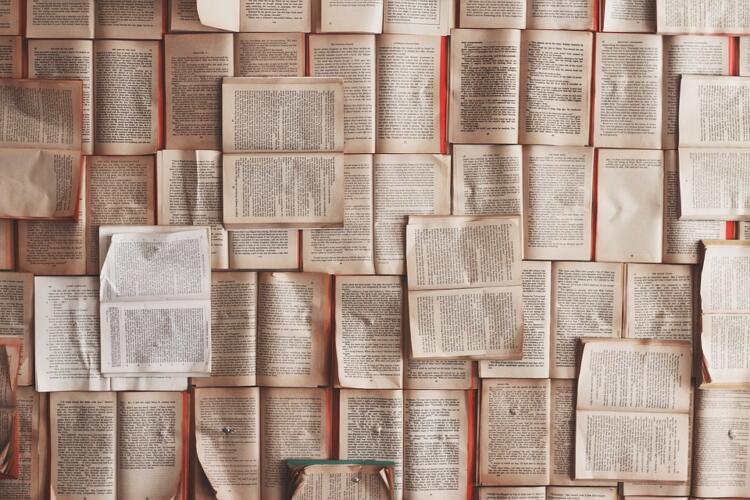 Libri consigliati su SEO, SEM, Web Marketing (Guide, Zona Marketing)