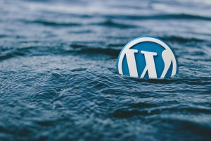 """WordPress: come risolvere il problema """"Unable to create directory uploads/xx/xx. Is its parent directory writable by the server?"""""""
