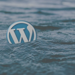 Object cache per WordPress: guida all'uso