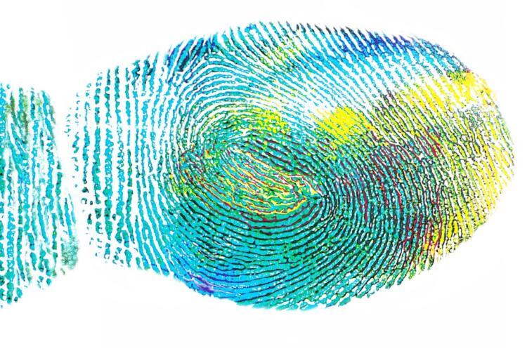 Come creare un'impronta dei componenti su Althium Designer (Guide)
