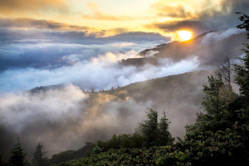 Seeweb, il cloud hosting ideale per WordPress (News)