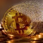 C'erano 300,000 dollari in bitcoin custoditi dentro un vecchio file ZIP